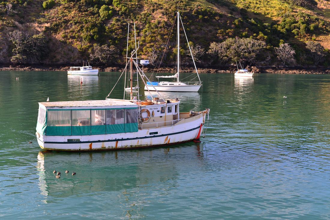 Auckland/ Waiheke Island