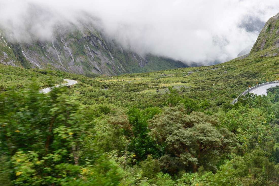 Queenstown to Milford Sound Day Trip