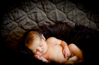 Cara Crumbliss Photography, Chicago based Newborn Photography